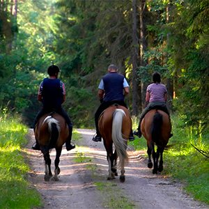 rutas a caballo Casa Quina
